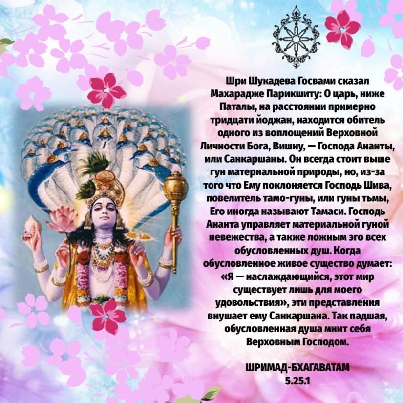 Шри Шукадева Госвами сказал Махарадже Парикшиту: О царь, ниже Паталы, на расстоянии примерно тридцати йоджан, находится обитель одного из воплощений Верховной Личности Бога, Вишну, — Господа Ананты, или Санкаршаны. Он всегда стоит выше гун материальной природы, но, из-за того что Ему поклоняется Господь Шива, повелитель тамо-гуны, или гуны тьмы, Его иногда называют Тамаси. Господь Ананта управляет материальной гуной невежества, а также ложным эго всех обусловленных душ. Когда обусловленное живое существо думает: «Я — наслаждающийся, этот мир существует лишь для моего удовольствия», эти представления внушает ему Санкаршана. Так падшая, обусловленная душа мнит себя Верховным Господом.
