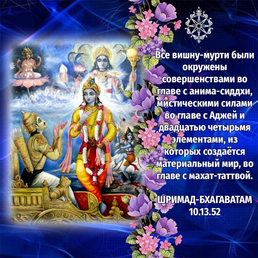 Все вишну-мурти были окружены совершенствами во главе с анима-сиддхи, мистическими силами во главе с Аджей и двадцатью четырьмя элементами, из которых создаётся материальный мир, во главе с махат-таттвой.